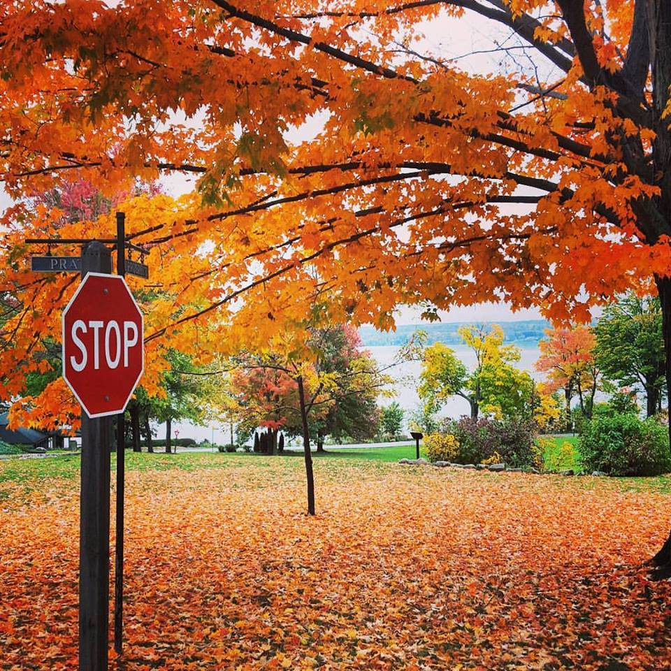 Fall in Chautauqua